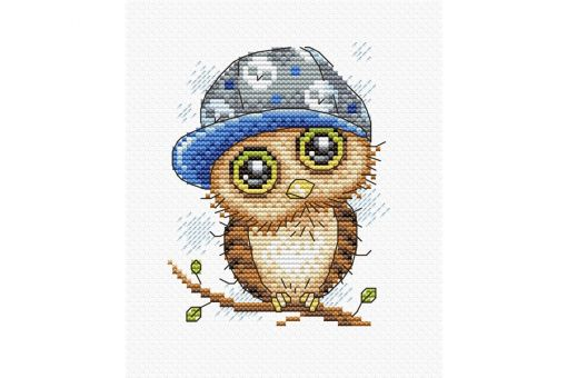 MP Studia - OWL