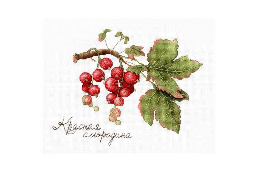 MP Studia - GIFTS OF NATURE. RED CURRANT