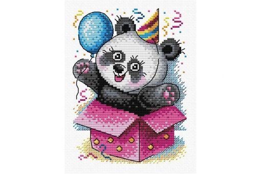 MP Studia - Happy Birthday!