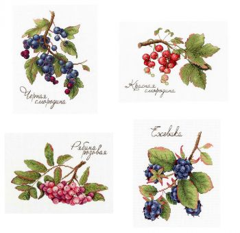 MP Studia - GIFTS OF NATURE. All Fruits SET of 4 Kits