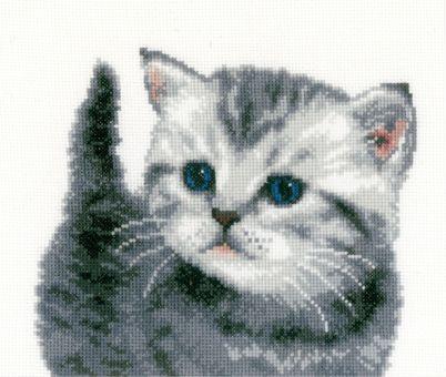 Vervaco - Cat