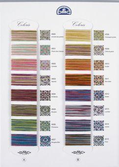 DMC Coloris Floss Color Card - 24 Colors