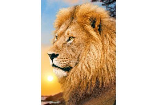 Diamond Painting Wizardi - LION KING