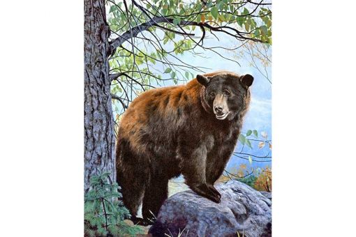 Diamond Painting Wizardi - BROWN BEAR