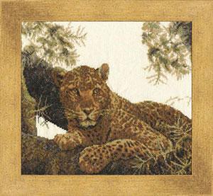 Zolotoe Runo - Somalischer Leopard