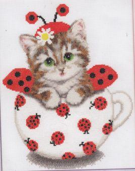 Zolotoje Runo - Kitten in a cup