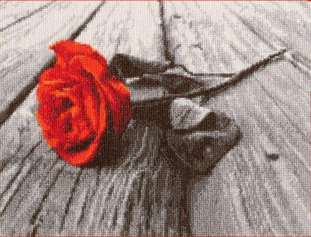 Zolotoje Runo - Romance