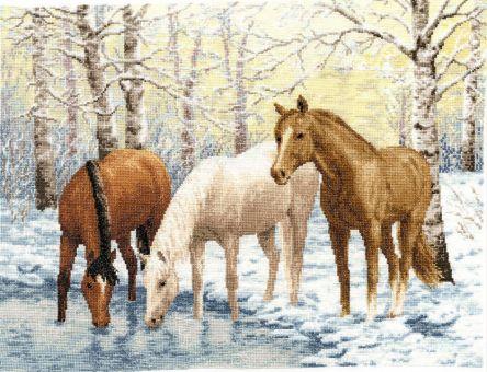 Zolotoje Runo - Horses near the River