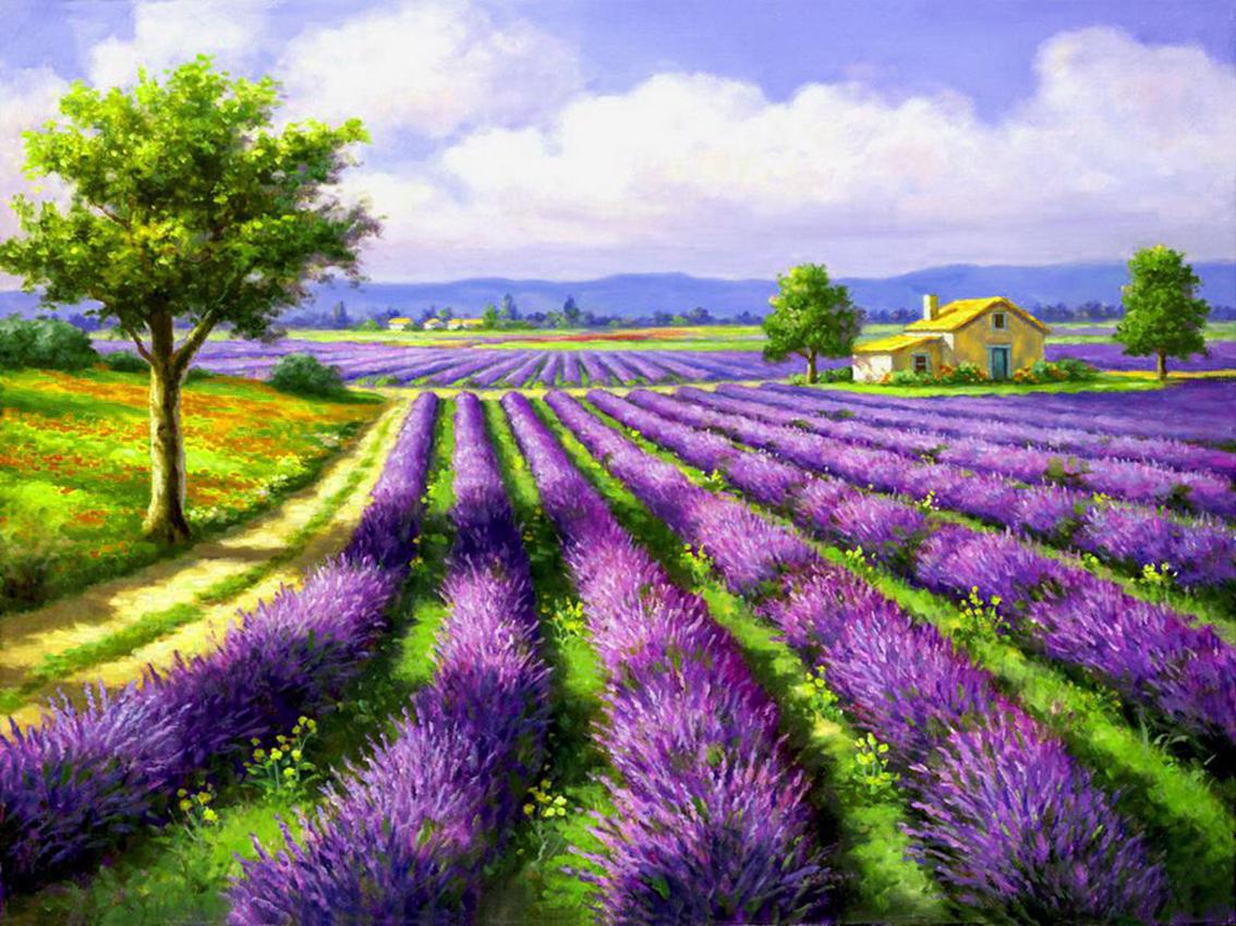 Cross Stitch Corner | Diamond Painting Artibalta - Lavendel Field