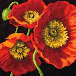 Dimensions Needlecrafts Needlepoint Red Poppy Trio