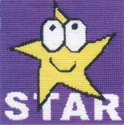 CK044 Star DMC Tapestry Kit